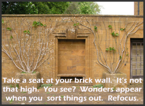 Brick_Wall_Refocus copy
